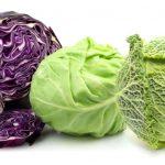 best cabbage varieties to grow